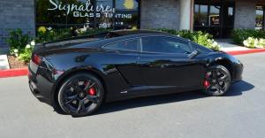 Lamborghini Tint